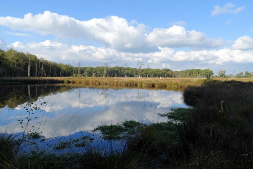 vennetjes natuurgebied Appelbergen