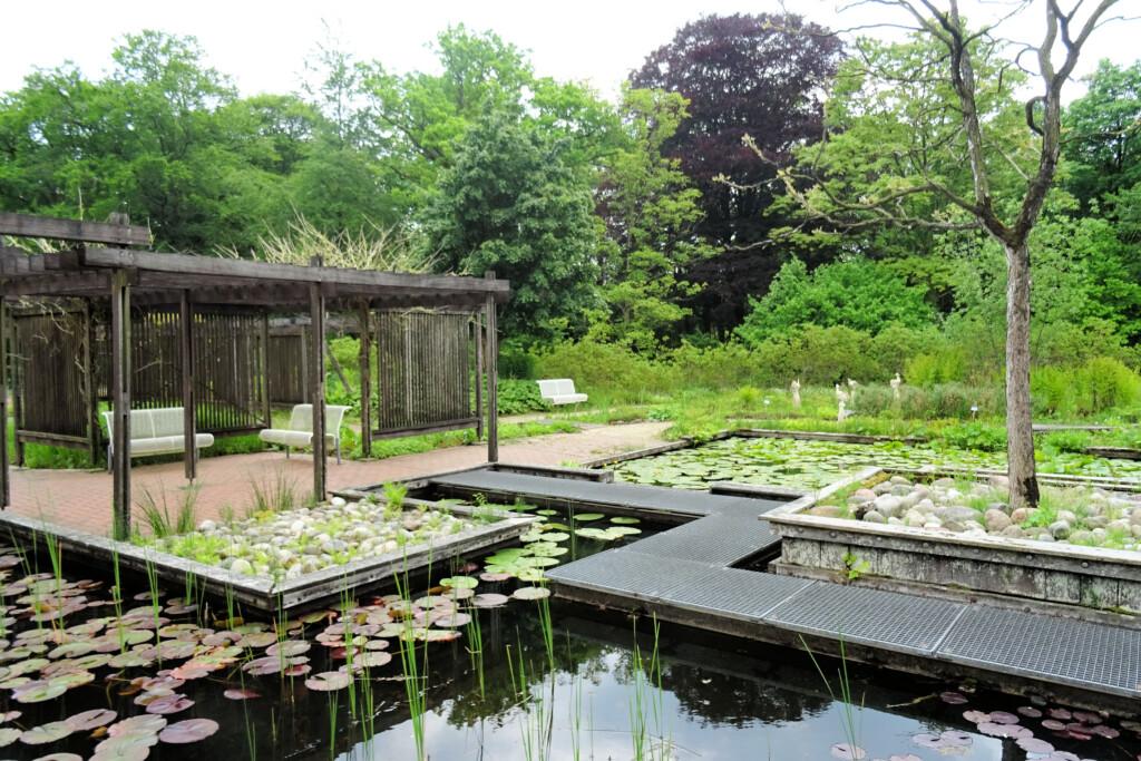 watertuin De Hortus