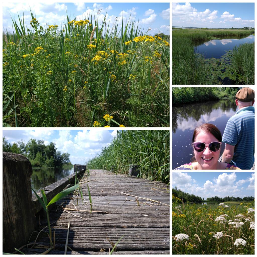 wandelen natuur juni