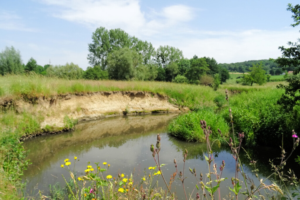 bronnen Epen Zuid-Limburg