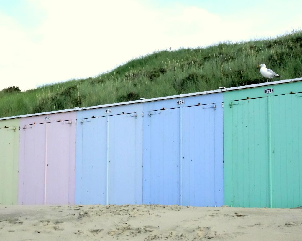 Groene Wissel Domburg Strandhuisjes