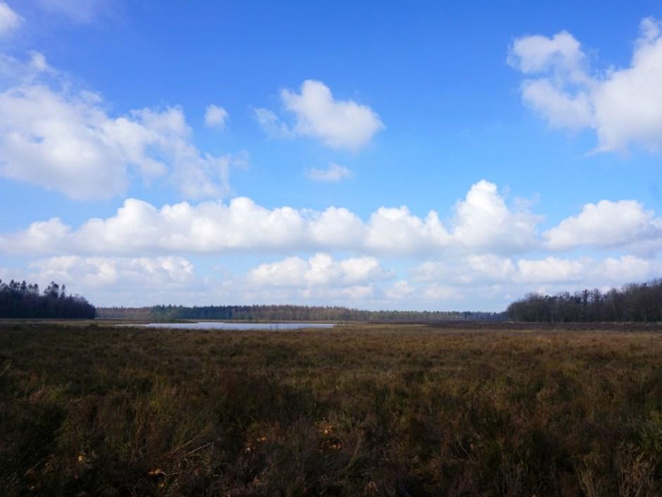Dwalen door Drenthe: Gijsselterkoelen