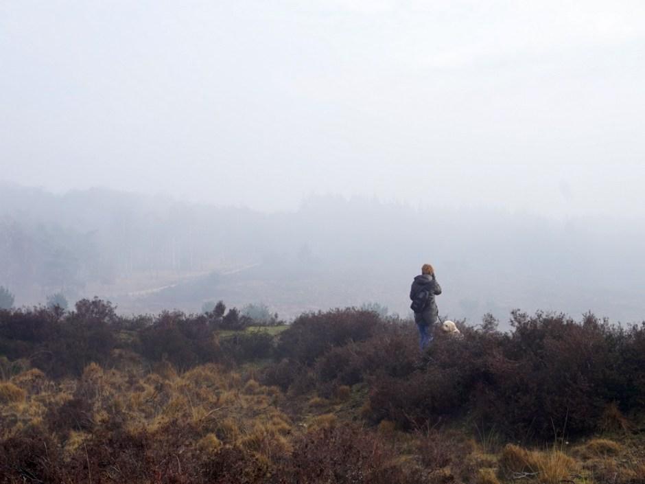 Uitzicht vanaf de Heumense Schans
