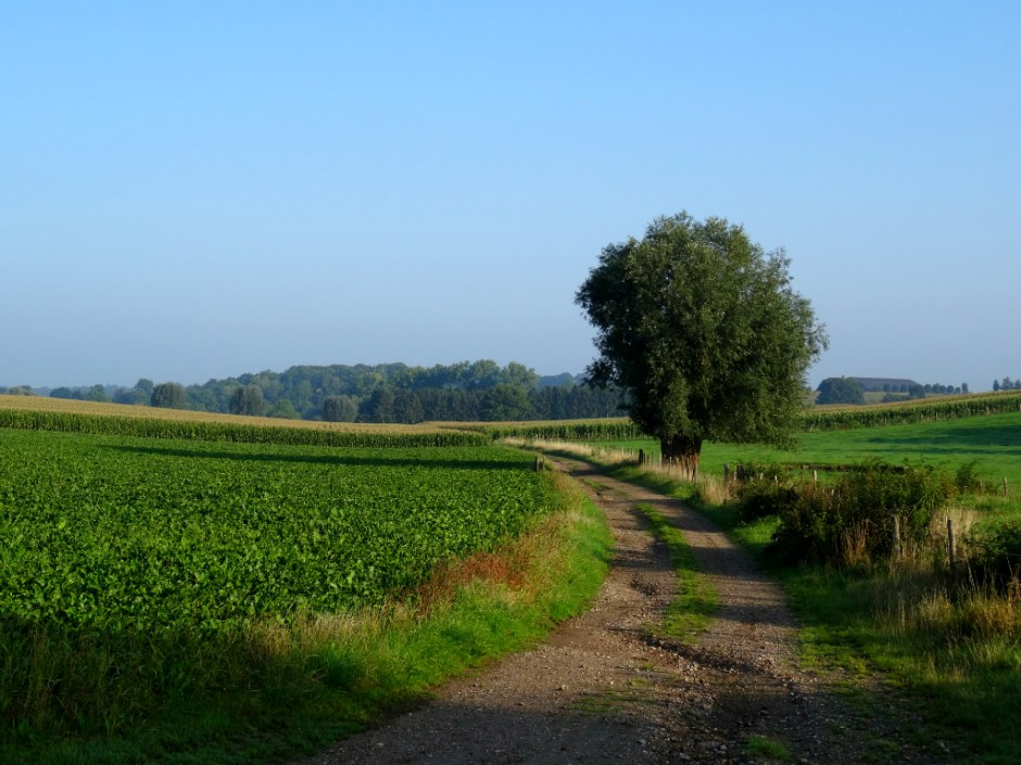 Wandelen in Zuid Limburg
