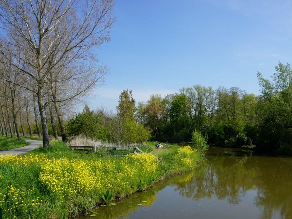 Rustige paden langs het water - Klompenpad Rhenoijschepad