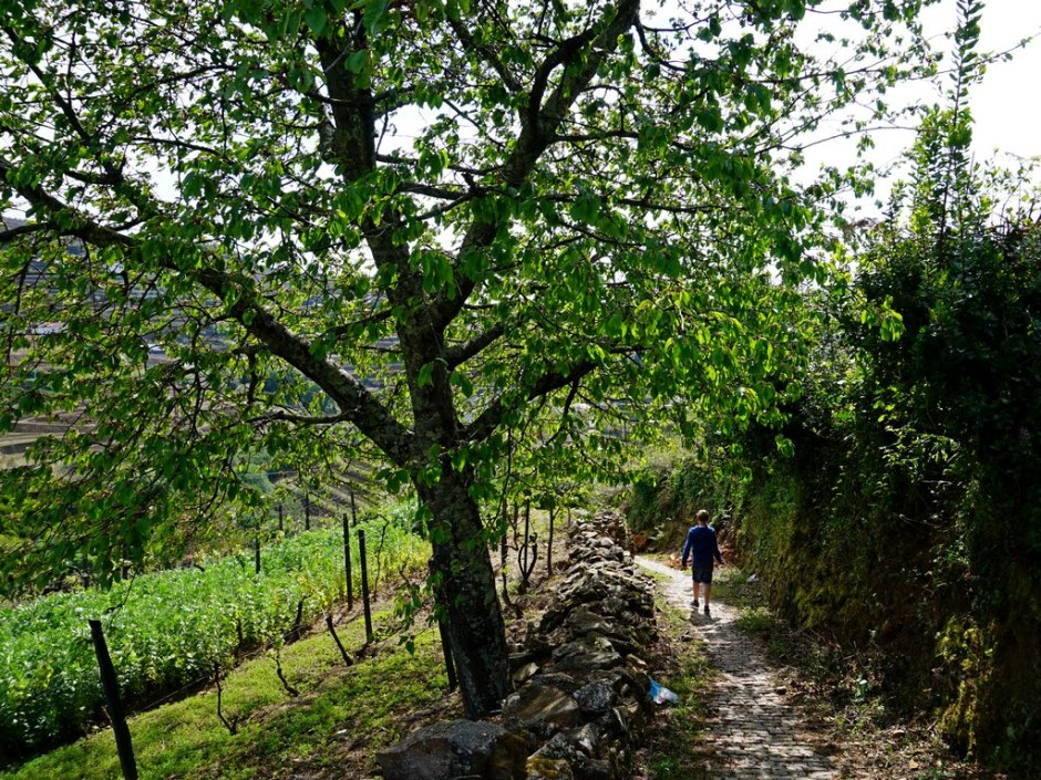 Wandeling naar Mesao Frio