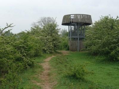 Uitkijktoren Bisonbaai