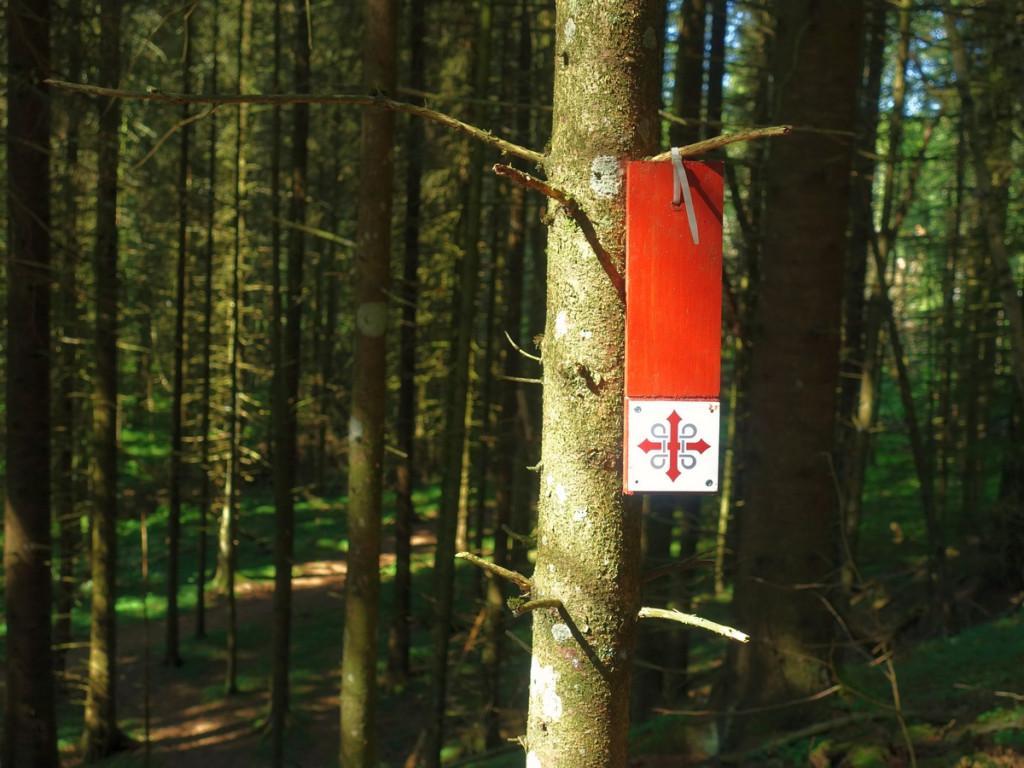 Markering Olavsleden in het bos