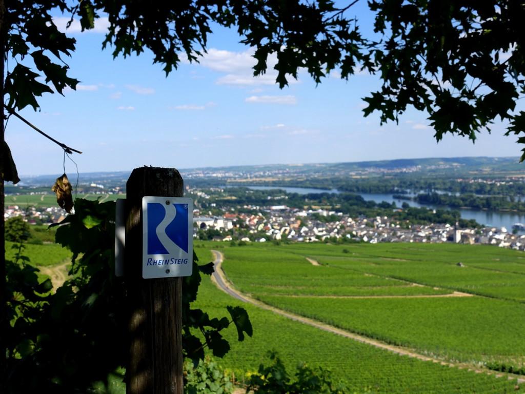 Rheinsteig Rudesheim