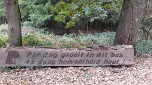 Hout