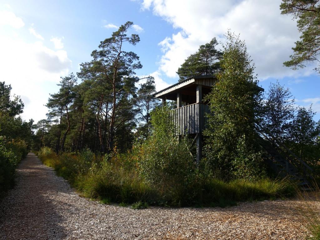 Nordpfade Dör 't Moor Vogelkijkhut