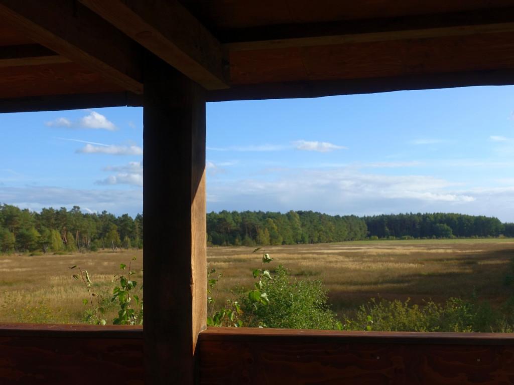 wandeling 1 uitzicht vogelkijkhut