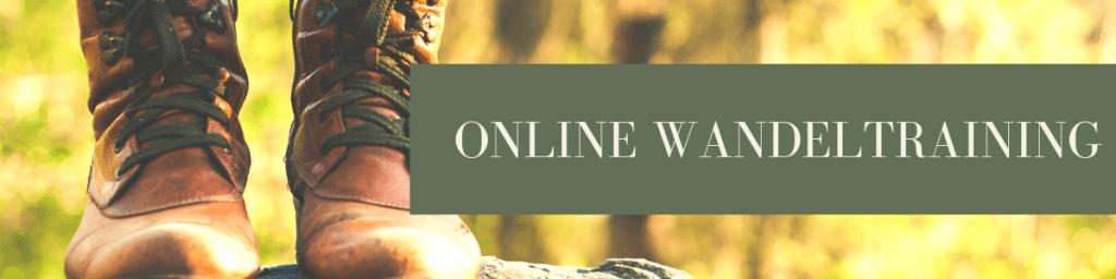 Online Wandeltraining