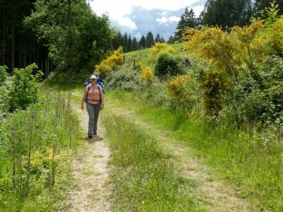 Wanda Wandelt meerdaagse wandeltocht duitsland