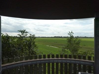 Uitzicht over de weilanden vanuit de uitkijktoren