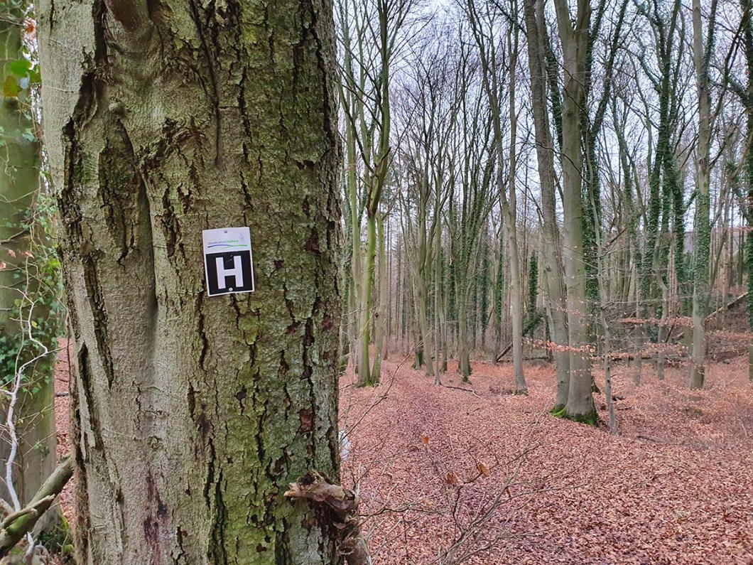 Markering Hermannshöhen