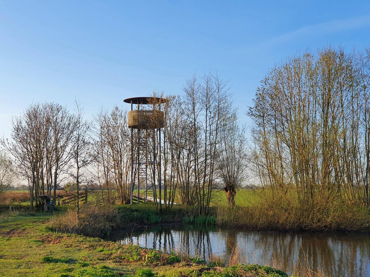 Uitkijktoren Willeskop