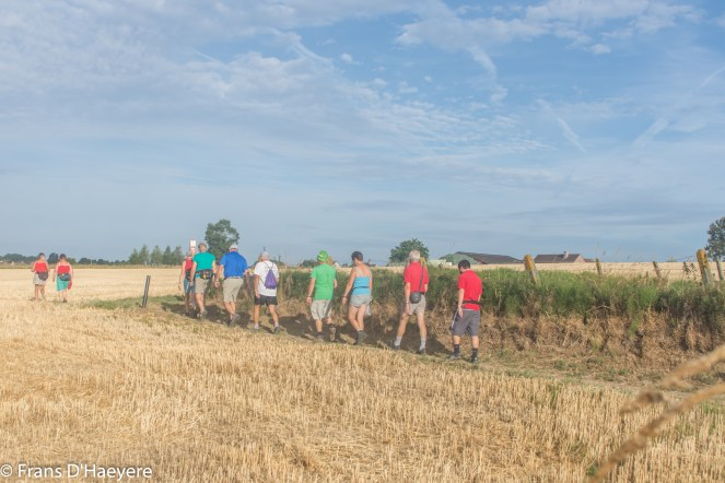 2018-07-29 Everbeek-36