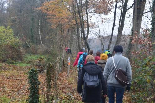 Diepenbeek 25-11-2018 074