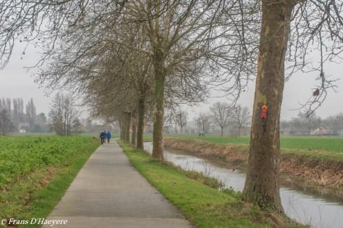 2018-12-29 Sleidinge-89