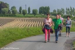 2019-05-18 Lichtervelde-46
