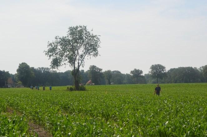 wandeling in Kleine-Brogel 18-6-2019 035