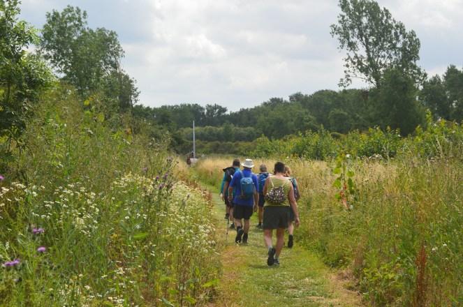 wandeling in Neerlinter 108