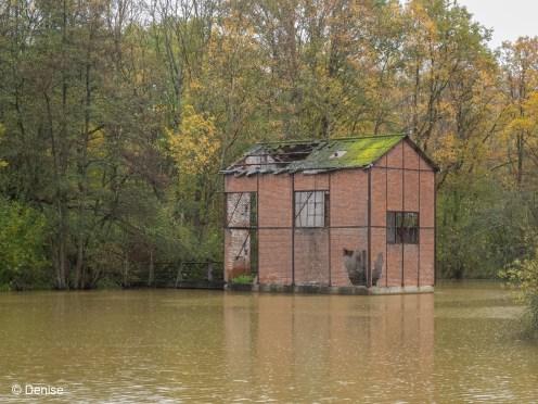 Zonhoven-2019-11-08-0097