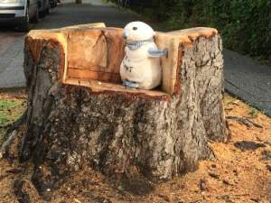 Afgezaagde boom met een knuffel