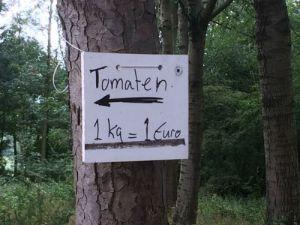 Tomaten 1 kg = 1 Euro