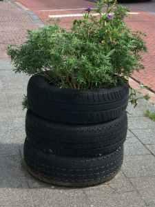 Autobanden met planten