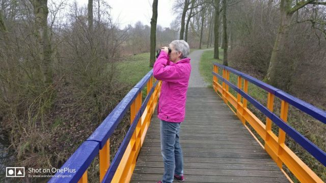 Zo maar even een wandelingetje in Natuurpark Lelystad