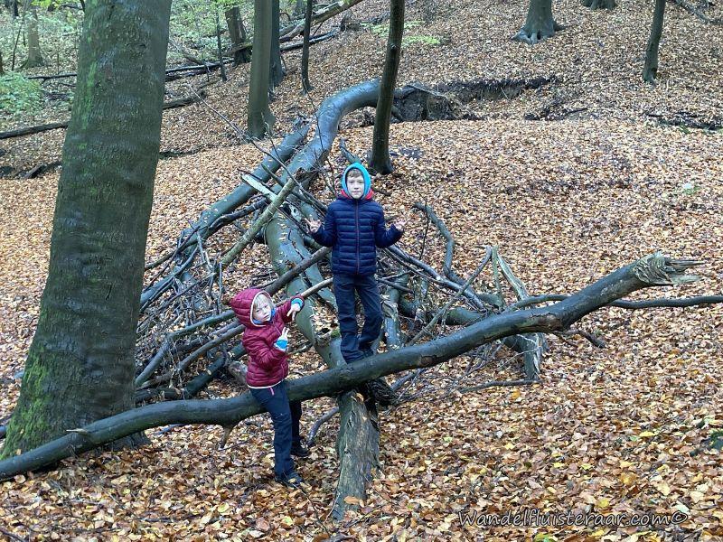 Wandelen met kinderen: 8 tips om het leuk te houden