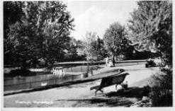 bron: Streekarchief Langstraat Heusden Altena, objectnr WAA04167