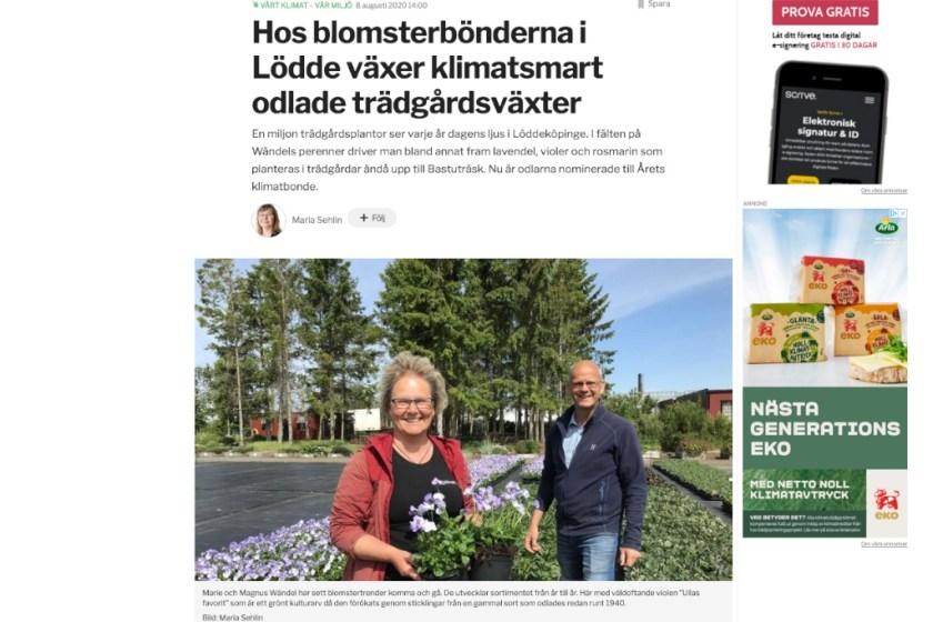 Blomsterbonder i Sydsvenskan