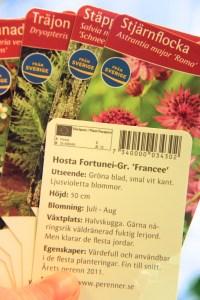 Växtpass finns på baksidan av alla våra etiketter, intill streckoden.
