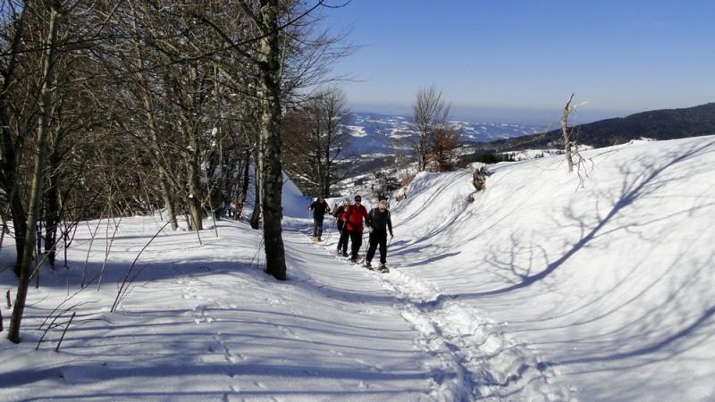 Sneeuwschoen wandelen van 8 – 15 februari 2014