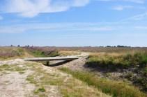 Drenthe: Loon-Balloërveld 16 KM