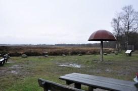 Noordscheveld