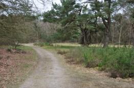 Strubben-Kniphorsterbosch