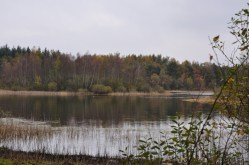 Canadameer-Drents Friese Wold