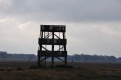Aekingerzand - Drents Friese Wold