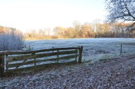 Drenthe: Norg-Peest 11 KM