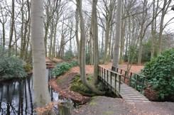 Eelde-Haren 16 KM