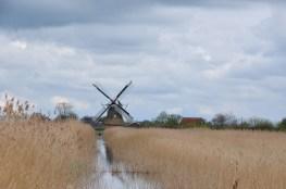Groningen- Kardinge 15 KM