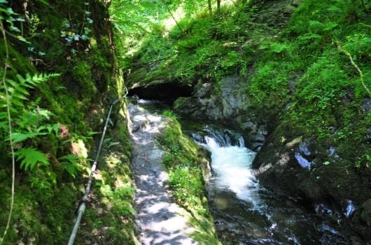 Lydford Gorge Darmoor Park
