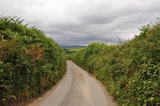 Engelse wegen met heggen