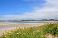 Wandeling Padstow Cornwall