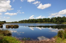 Drenthe: Vledder 17 KM