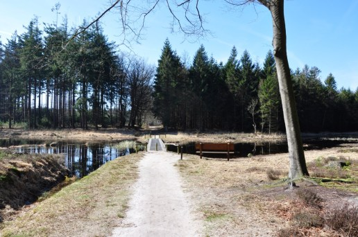 wandelbankje maart 2017 Bakkeveen
